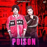 Poison Song Poster By Shudu 2019