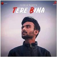 Tere Bina Song poster by Hardik Panday