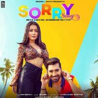 Sorry 2019 Punjabi Mp3 Song Free Download Pagalworld