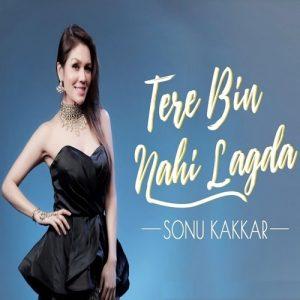 Tere Bin Nahi Lagda (POP) Audio Mp3 Song Download Pagalworld
