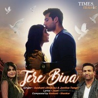 Tere Bina 2019 Mp3 Song Download Pagalworld
