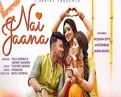 Nai Jaana Indian Pop Song