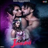Chilam Jawani Movie Poster Meer pagla