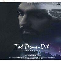 Tod Da e Dil Song Download